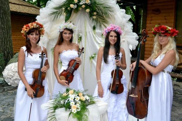 исполнители на свадьбе