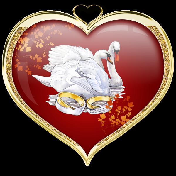 лебеди в сердце