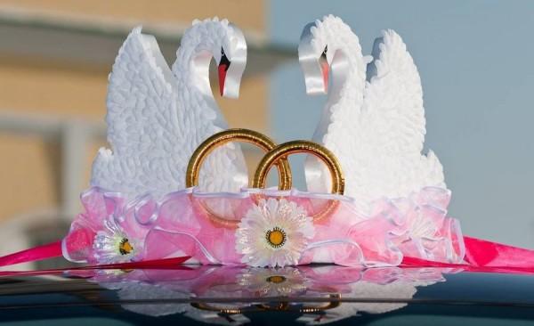 Лебеди на свадебной машине